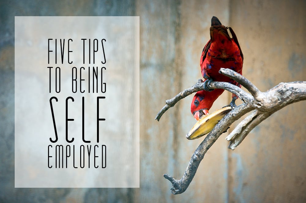 5 Tips To Being Self-Employed