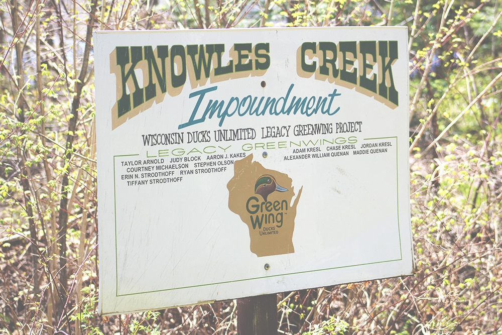 Knowles Creek
