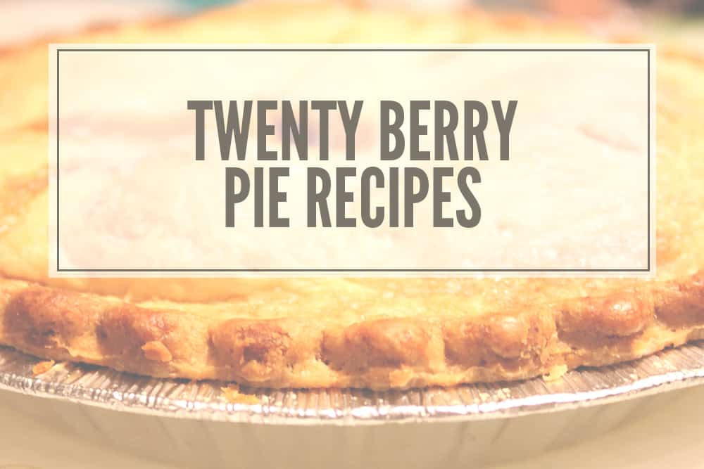 Twenty Berry Pie Recipes