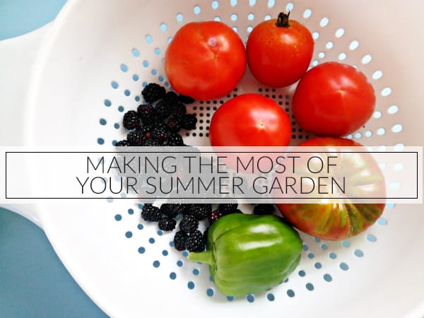 Making The Most of Your Summer Garden