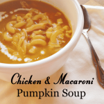 Chicken and Macaroni Pumpkin Soup