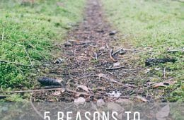 5 Reasons to Get Outside this Fall