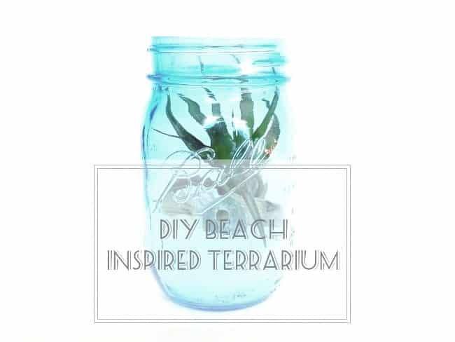 Beach Inspired Terrarium DIY