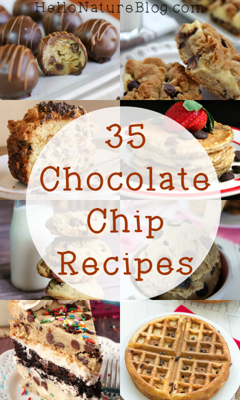 35 Chocolate Chip Recipes
