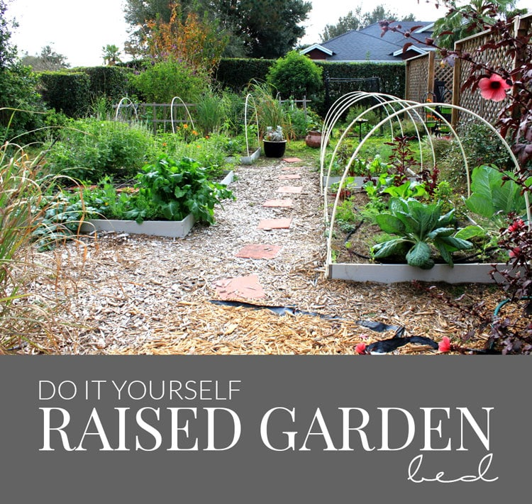 Do It Yourself Raised Garden Beds Container Gardening