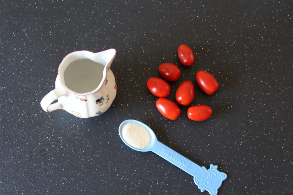 Ingredients for Easy Tomato Ice Cube Treat for Dogs