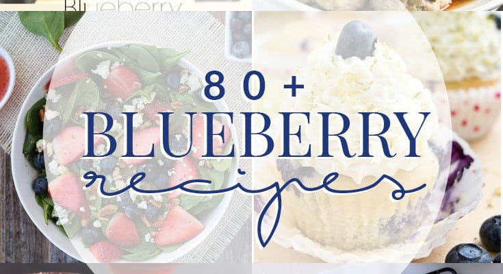 80 Blueberry Recipes
