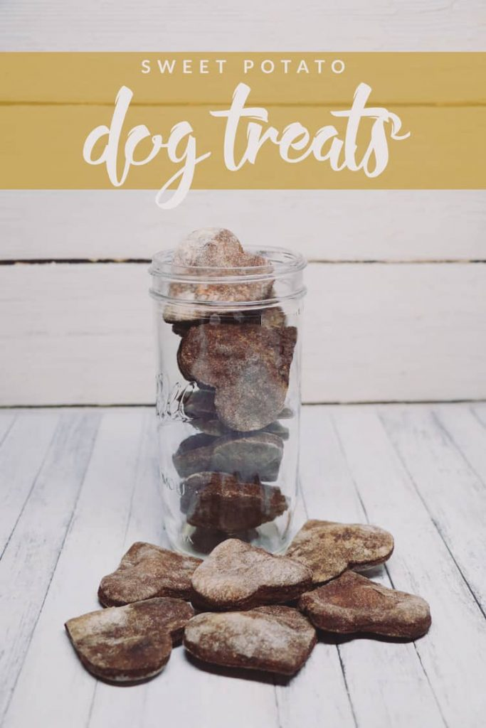 Let your dog enjoy the tastes of the season with this delicious sweet potato dog treat! Easy to make and sure to be devoured by Fido.