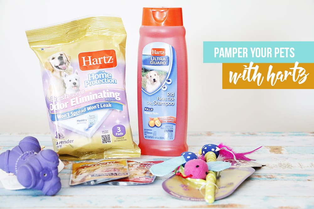Pamper your pets with Hartz! Treat them with delicious treats, toys, and products that make pet ownership a breeze!