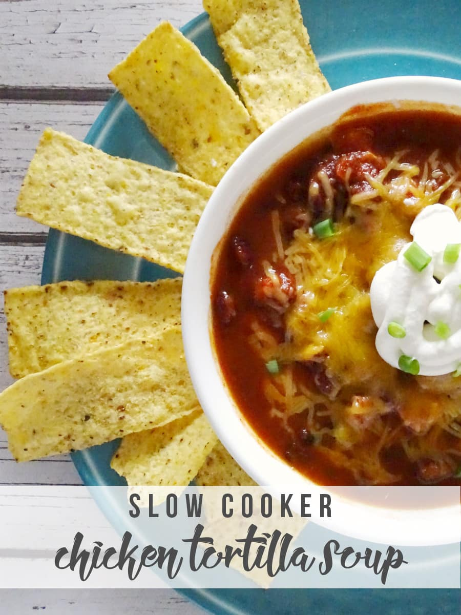 Slow Cooker Chicken Tortilla Soup, shared by Hello Nature at the Clever Chicks Blog Hop