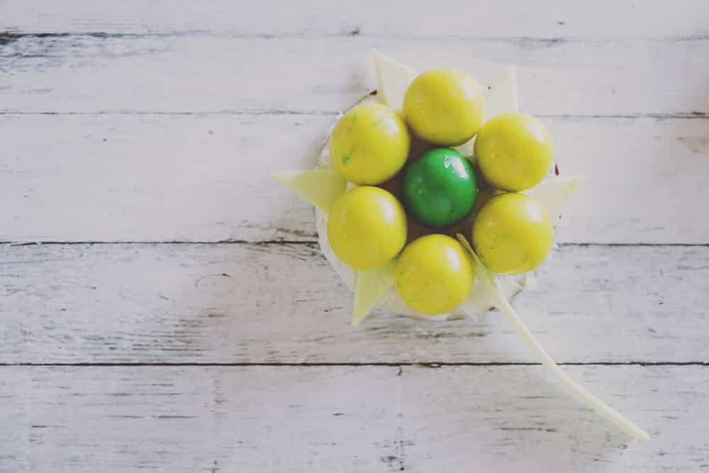 These super simple gumball flowers make the perfect Spring decor for your table! With their bright colors and sweet flavors, everyone will love them!