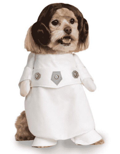 princess-leia-dog-costume