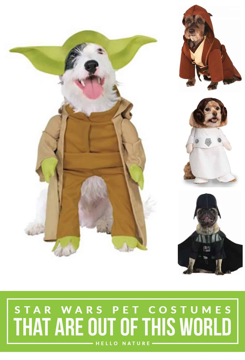 Your pooch will look out of this world with these fun Star Wars pet costumes! Now the whole family can dress up for Halloween!