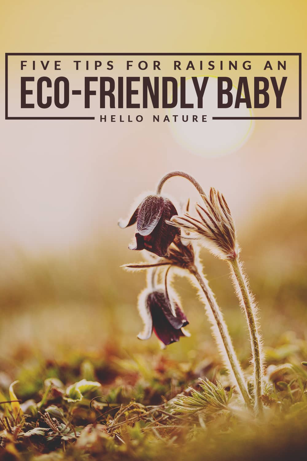 These five simple and inexpensive tips for raising an eco-friendly baby will help you leave less of an impact on our planet in no time.