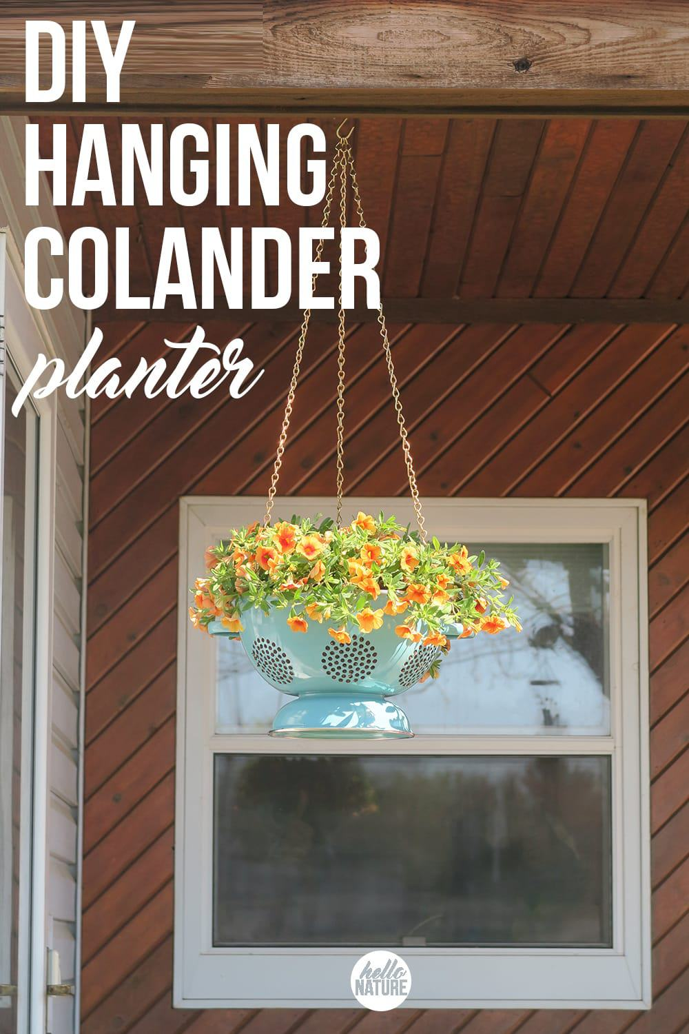 Blue colander hanging planter.