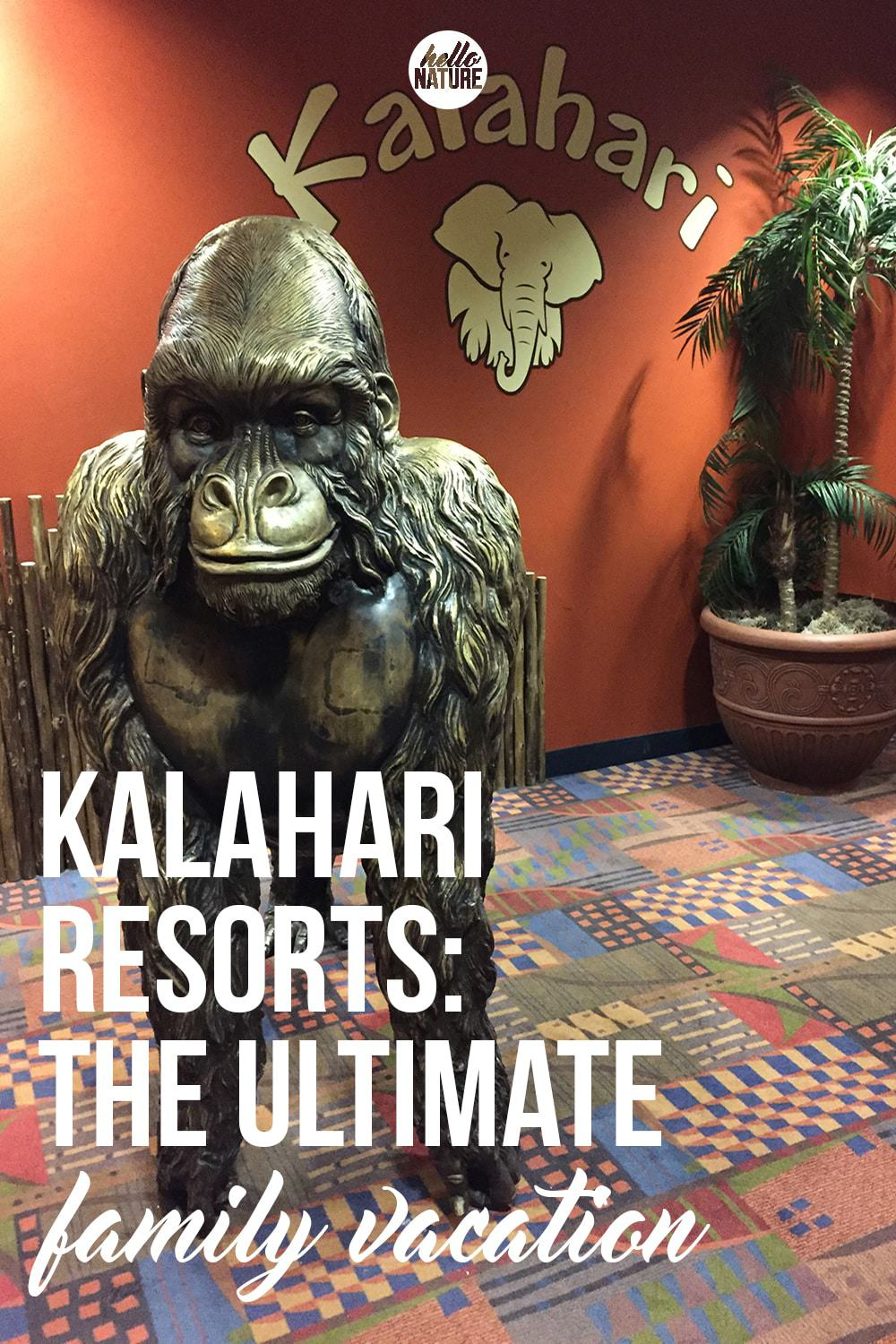 Not sure where to go for your next family trip? Kalahari Resorts are the ultimate family vacation! They've got something for everyone!