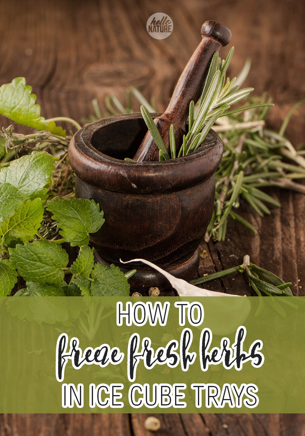 Freezing fresh herbs is one of the best ways to preserve fresh herbs! Learn how to preserve fresh herbs by freezing them in this simple guide.