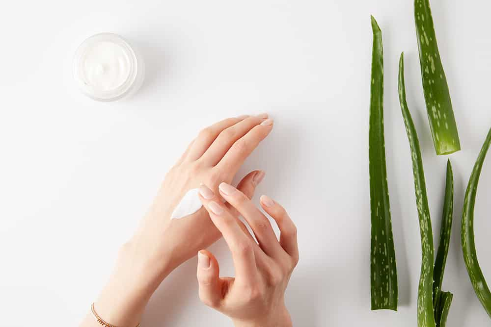 Did you know that there are many aloe vera plant uses for skin that go beyond sunburn relief? Learn how amazing aloe vera for skin care can be with this mini guide on the aloe vera plant uses and benefits. #Aloe #NaturalLiving #AloeVera #Natural