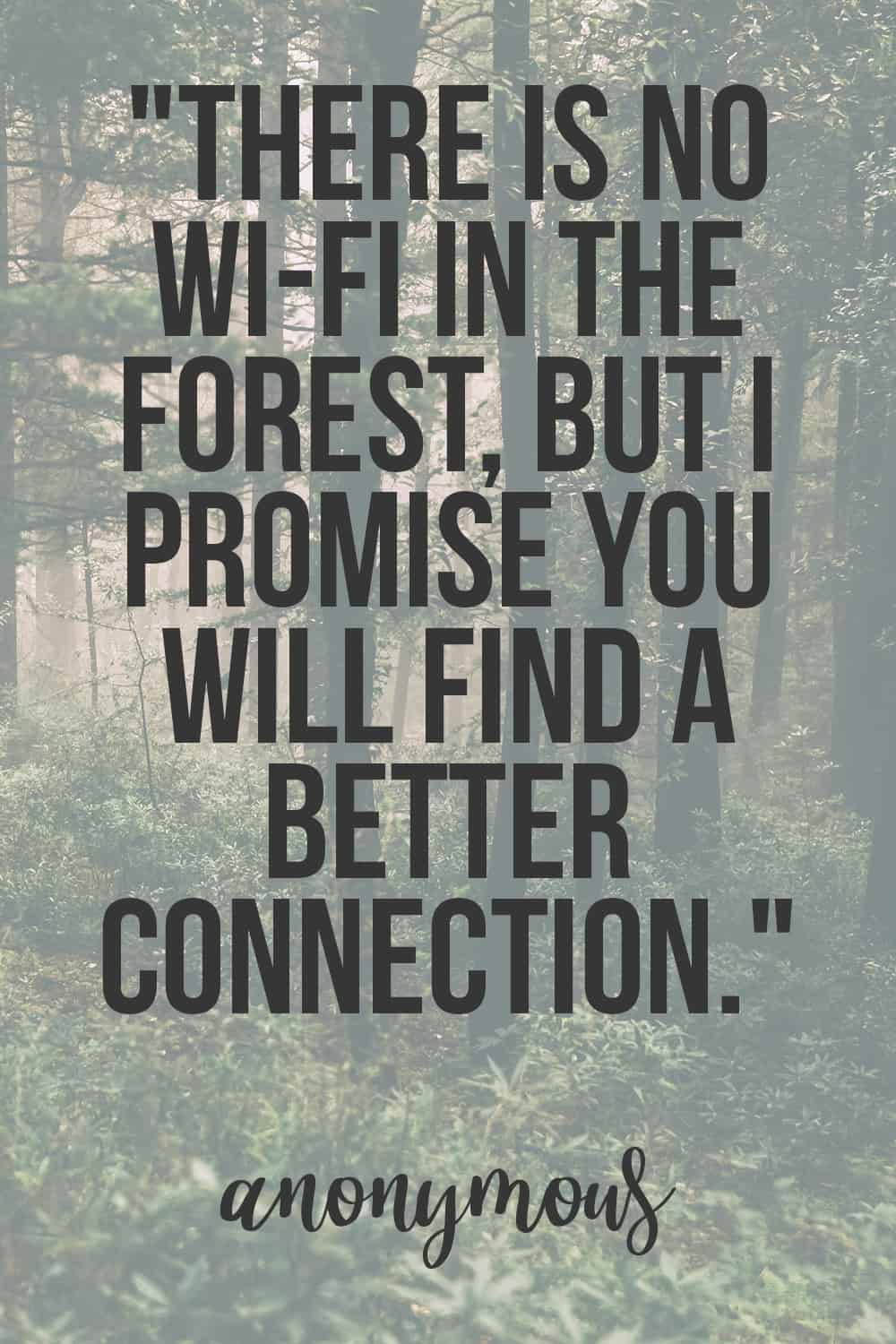 There is no wi-fi in the forest, but I promise you will find a better connection quote.