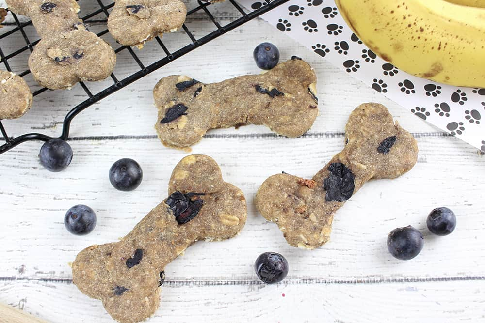 Looking for easy dog treats? Try these homemade dog treats with banana!