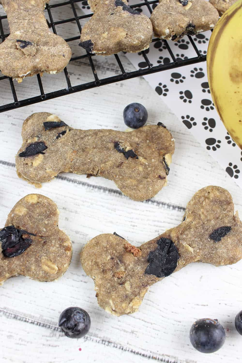 Looking for a simple dog treat recipe? Make your pooch these homemade dog treats with blueberries!