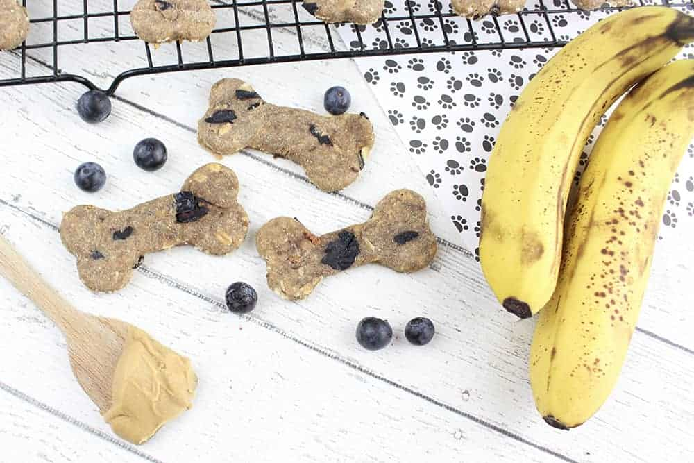 • These homemade dog treats with oats, banana, and peanut butter (along with less than a handful of other ingredients) are perfect for your pooch.