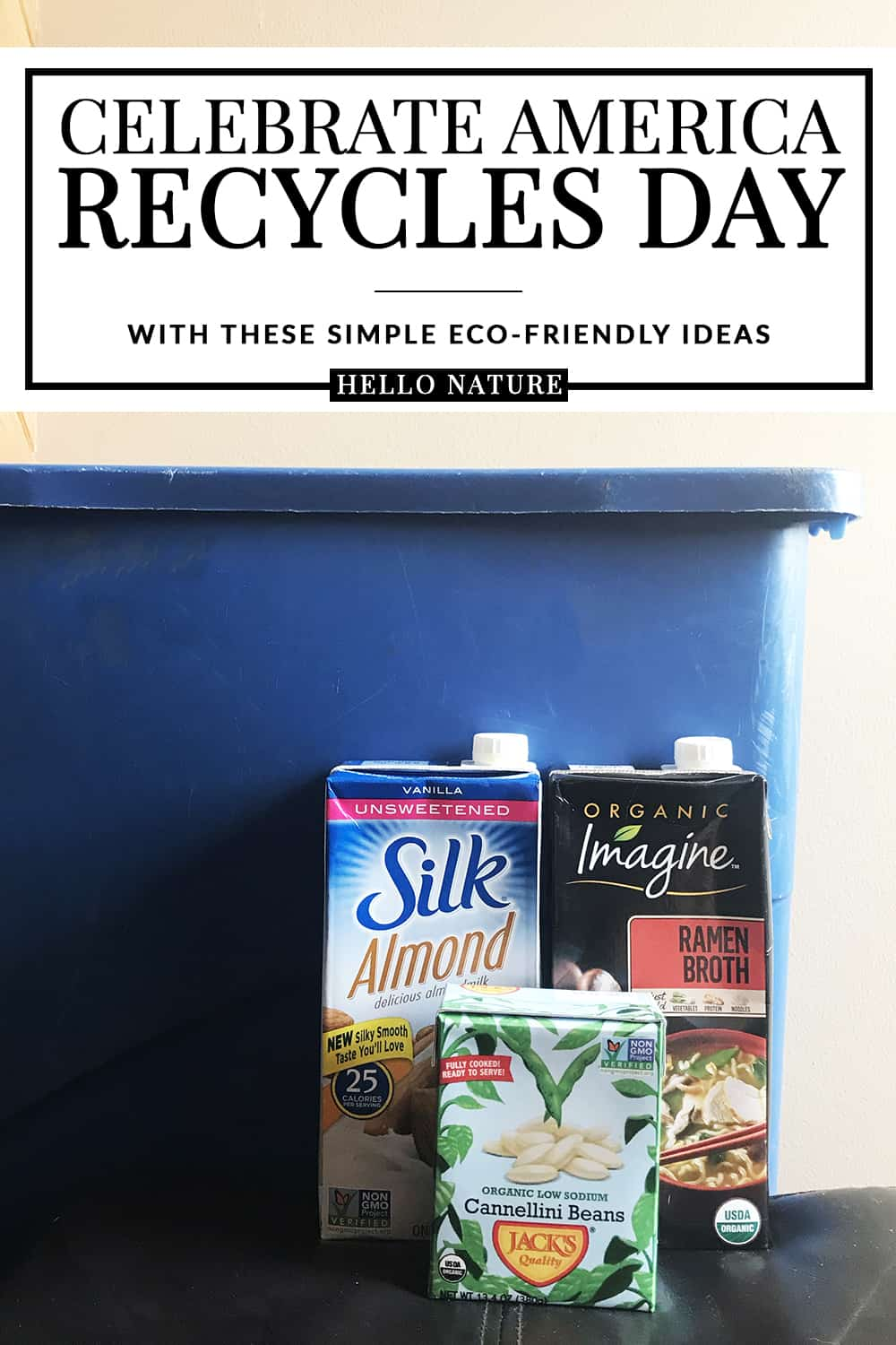Want an easy way to celebrate America Recycles Day on November 15th? Check out these ideas and learn more about ways you can easily go green with your family. #RecycleYourCartons #Recycling #GreenLiving #EcoFriendlyLiving #AmericaRecyclesDay