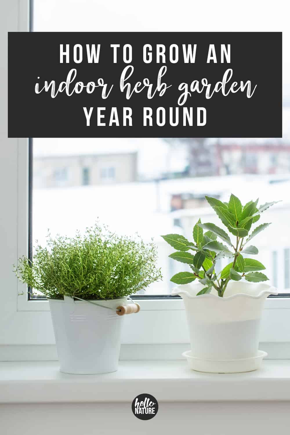 Trying to figure out how to grow herbs year round? You need these beginner indoor herb garden tips! You'll be able to grow herbs inside your home with these 9 easy tips. #HerbGarden #Herbs #Homesteading #IndoorHerbGarden #BeginnerGardener