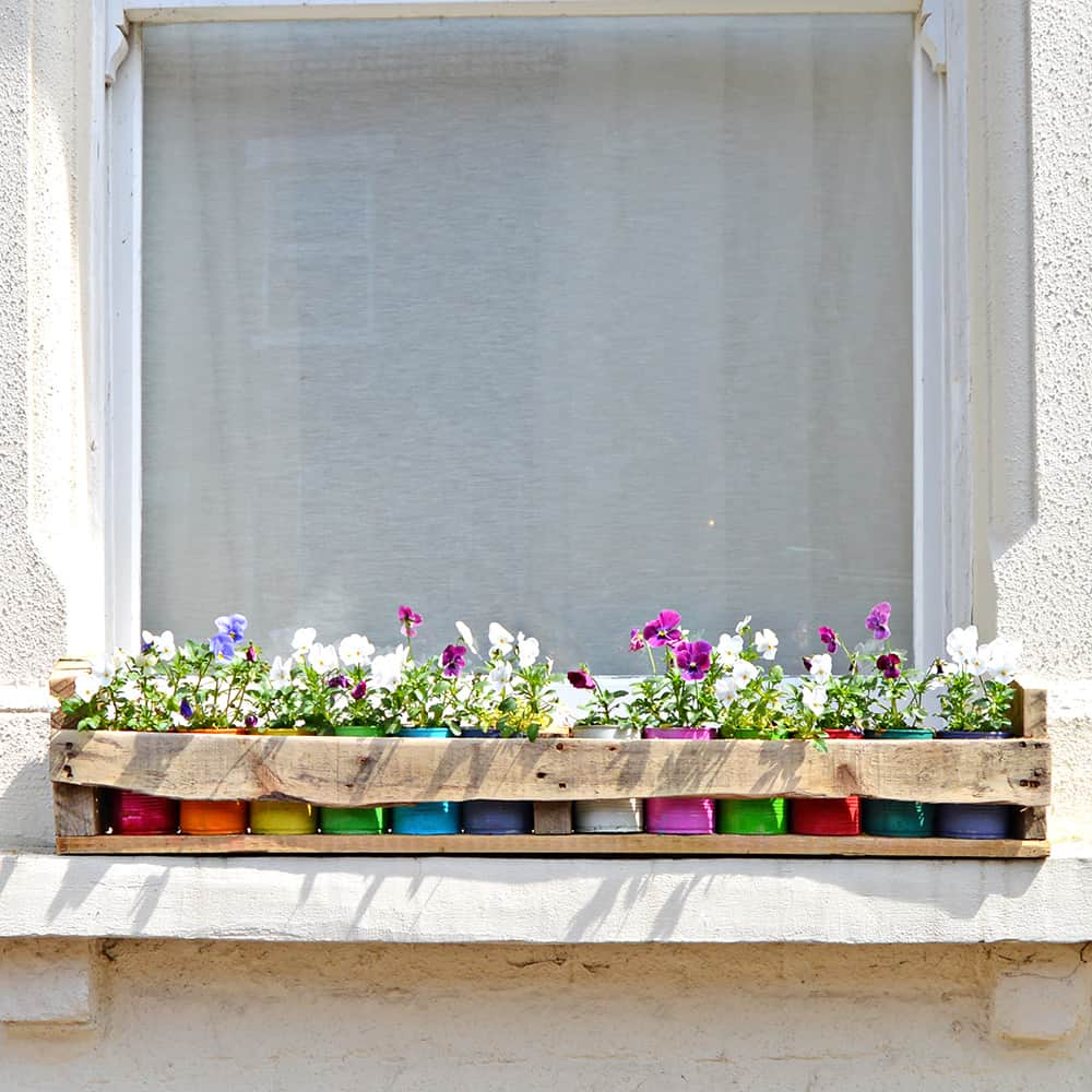 Colorful tin can planters in a recycled pallet box.