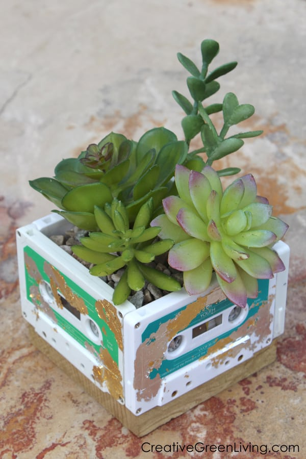 Succulent planter made with old cassette tapes.