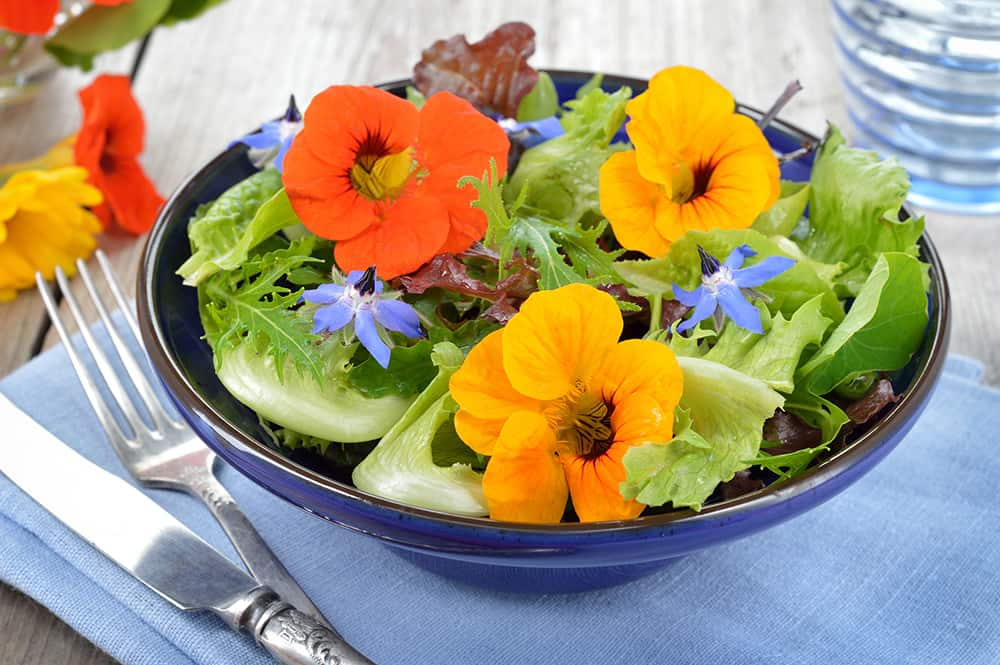 edible landscaping ideas with edible flowers