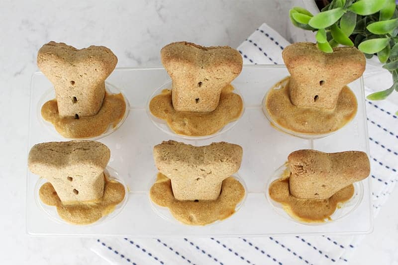 frozen dog treats with peanut butter