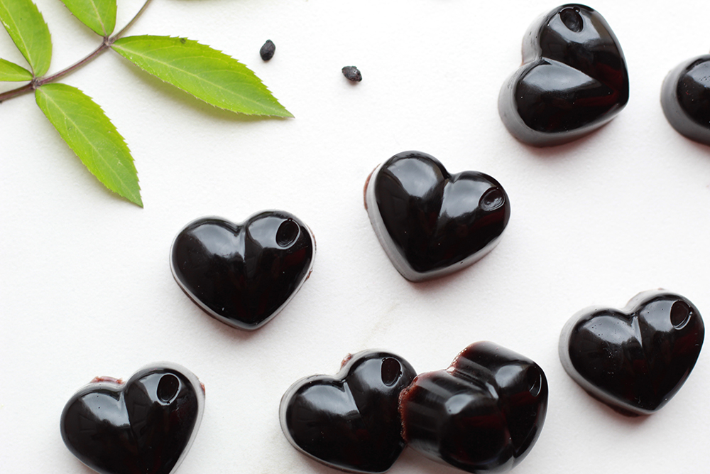 diy elderberry gummies
